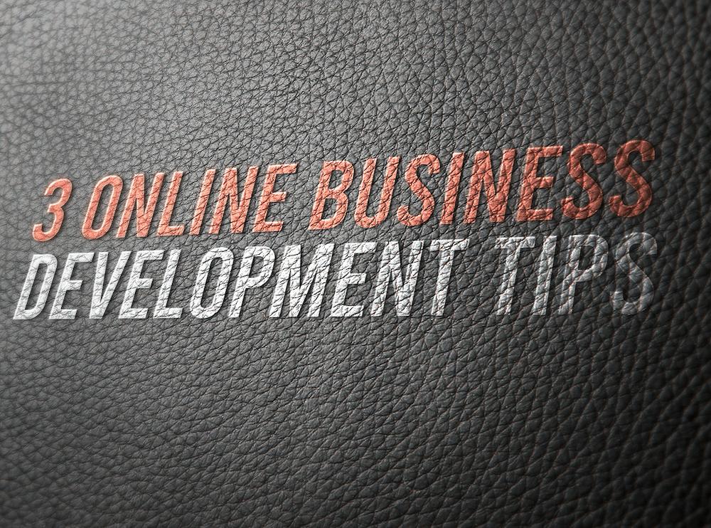 3 Online Business Development Tips